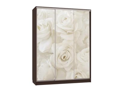Шкаф-купе Бассо 7-600 розы венге
