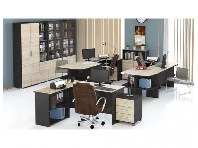 Набор мебели для офиса Успех-2 ГН-184.005 Венге Цаво, Дуб Сонома